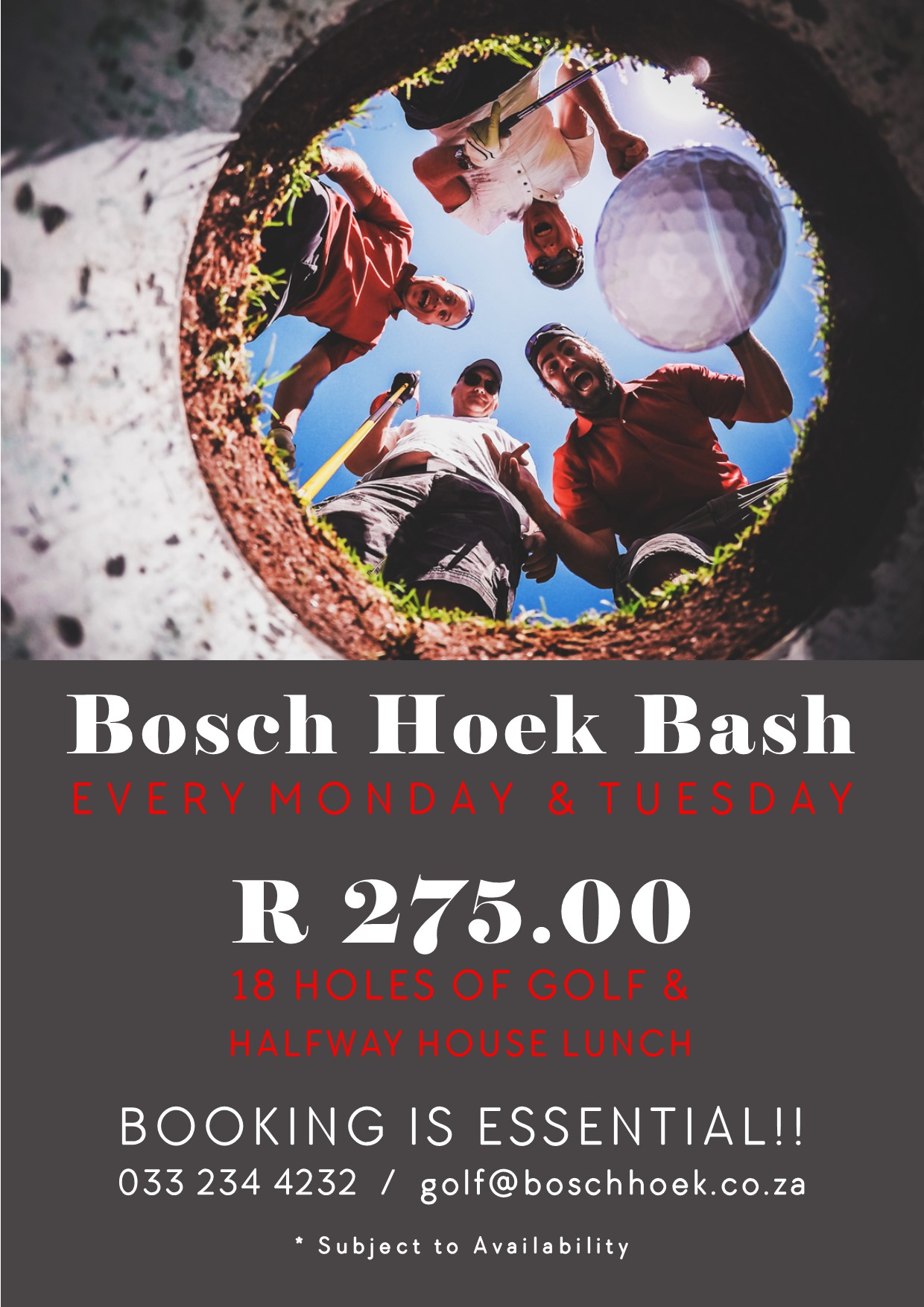 2019 Bosch Hoek Bash - Advert